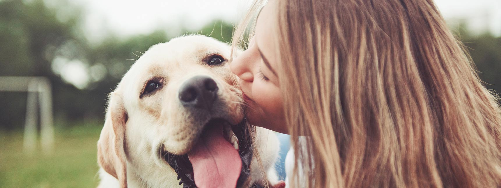 We care about your pets at Gabriel Park Veterinary Clinic in Portland OR